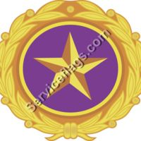 Gold Star Related Images Thumbnail