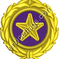 Gold Star Pin Embroidery Image  Thumbnail