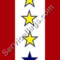 3 gold 1 blue stars service flag Thumbnail